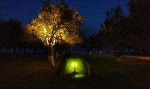 neverlandcamping